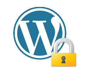 Secure WordPress With a Few Easy Steps Without a Security Plugin