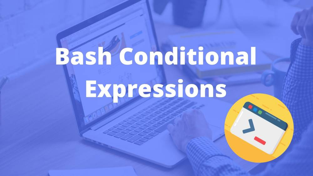 Most popular BASH conditional expressions